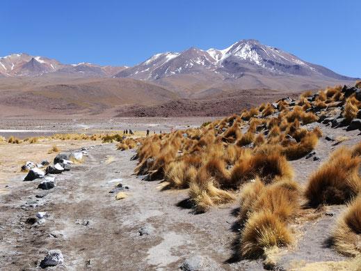 Atemberaubende Natur, Reserva Nacional de Fauna Andina Eduardo Avaroa, Bolivien (Foto Jörg Schwarz)