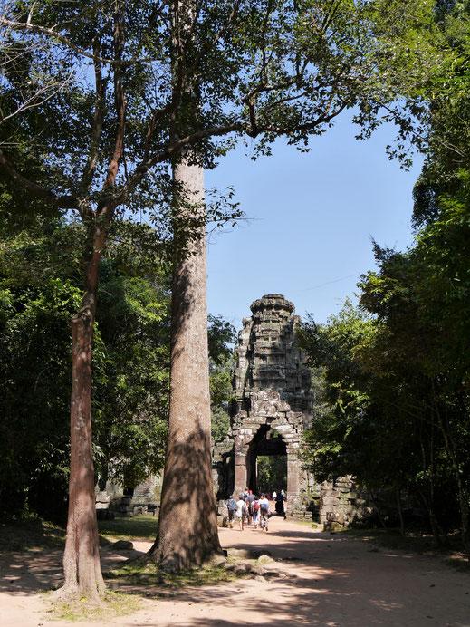 Auch dieser Tempel hat wunderschöne Tempeleingangstore, Preah Khan, Kambodscha  (Foto Jörg Schwarz)