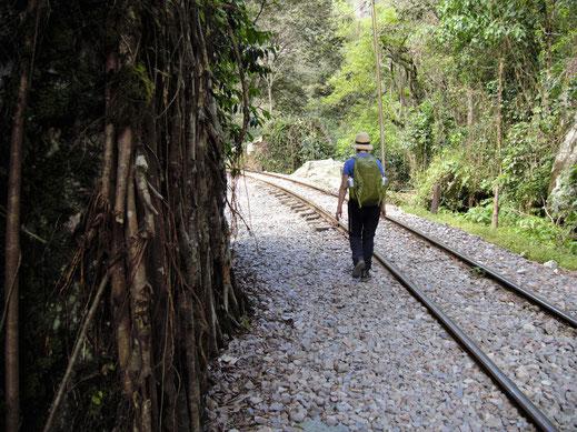 Unser Vorschlag Nr. 8 für Gemütliche: Trek von Hydroelectrica nach Aguas Calientes, Peru (Foto Jörg Schwarz)