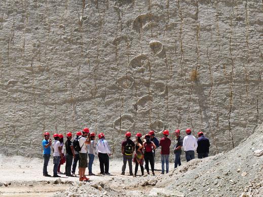 Spuren von Großsauriern finden sich an der ganzen Wand, Cal Orck'o bei Sucre, Bolivien (Foto Jörg Schwarz)