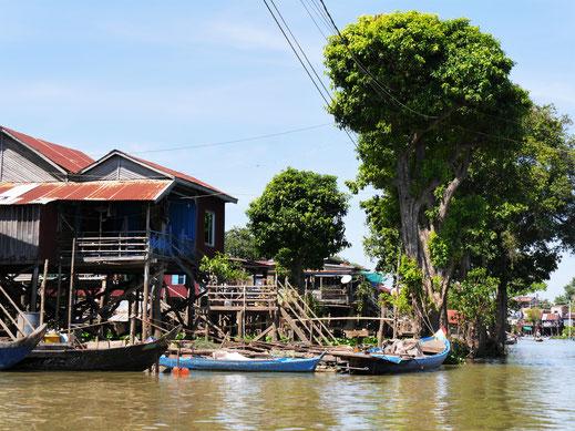 Verwunschene Uferzonen am Tonle Sap-Fluss, Kompong Chhnang, Kambodscha (Foto Jörg Schwarz)