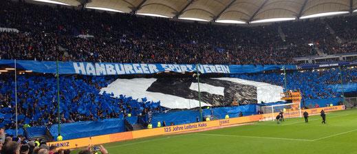 Vor dem 2016er-Heimspiel gegen Hertha BSC - ein gutes 2:0 folgte! (Foto  Jörg Schwarz)