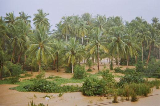 1997: Land unter! Chumphon, Thailand (Foto Jörg Schwarz)