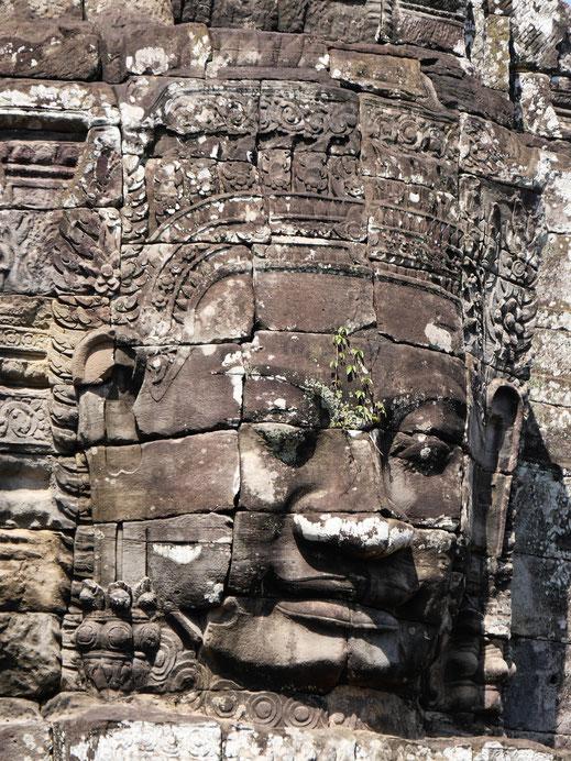Den kenn ich doch...!? Bayon, Kambodscha (Foto Jörg Schwarz)