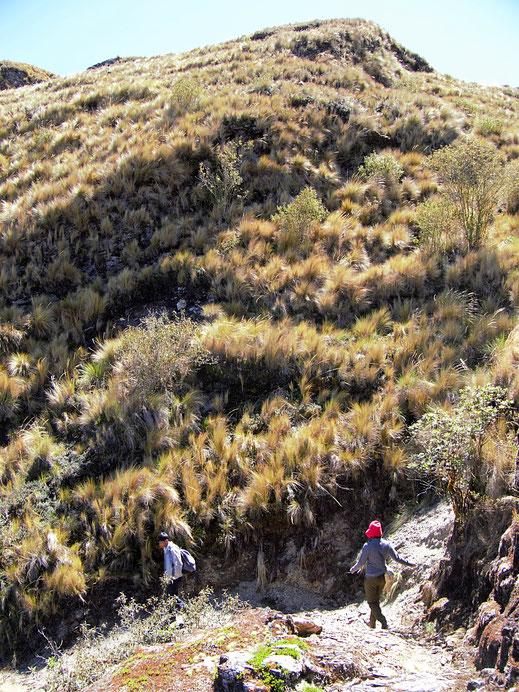 Es geht abwärts! Sorata, Bolivien (Foto Jörg Schwarz)