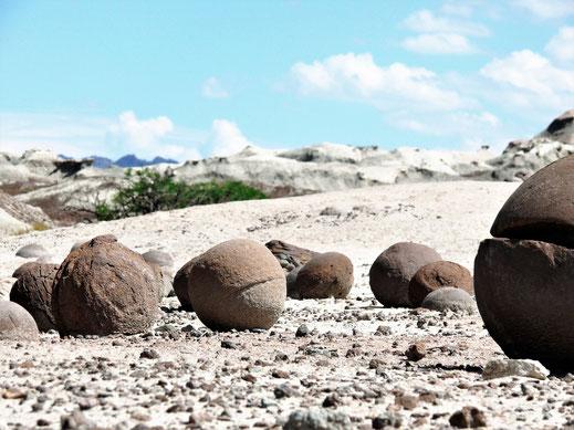 Argentinien Spurenwechsler Fotografie Jörg Schwarz Reiseblog Reisetipp Reise Reiseberichte Natur Kultur Reiseinformationen slow travel Weltreise nachhaltig reisen worldnomad backpacker