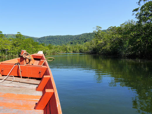 Schon der Weg ist beeindruckend und führt durch Mangroven, Dschungel und auf steile Berge... Bei Koh Kong, Kambodscha  (Foto Jörg Schwarz)