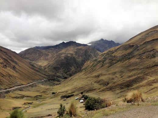 Wunderbare Puna auf dem Weg nach Machu Picchu, Ambra Malaga, Peru (Foto Jörg Schwarz)