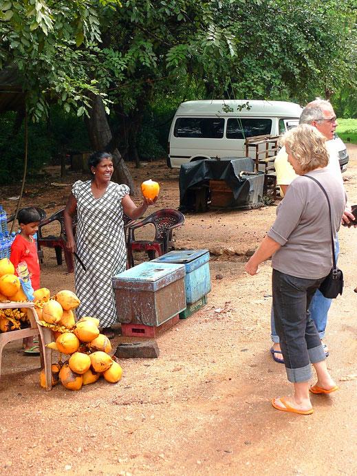 Durst? Gern auch mal ne Kokosnuss! Polonnaruwa, Sri Lanka (Foto Jörg Schwarz)