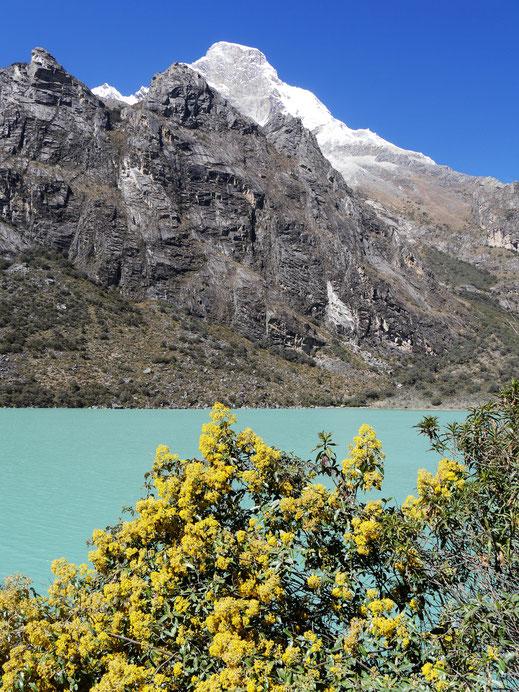 Die Laguna Orconcocha, im Hintergrund der Huascaran Norte, bei Yungay, Peru (Foto Jörg Schwarz)