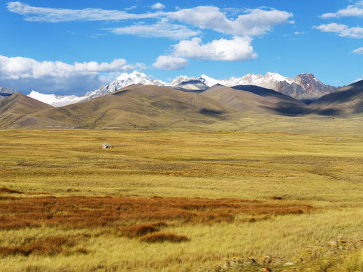 Die gold-gelbe Punalandschaft der östlichen Cordillera Blanca, Peru (Foto Jörg Schwarz)