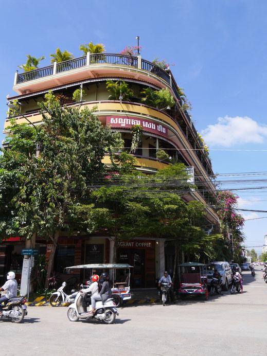 Es gibt viel Grün in der Stadt... Battambang, Kambodscha (Foto Jörg Schwarz)