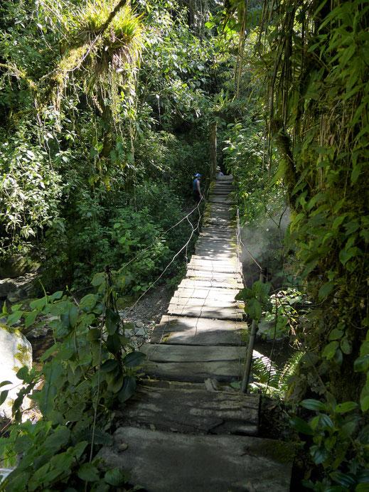 Die nächste Hängebrücke... Salento, Kolumbien (Foto Jörg Schwarz)