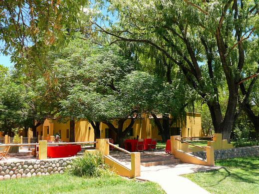 Spurenwechsler, Reise-Tips, Reisereportagen, Reiseblog, Barreal, Cuyo, Argentinien, Anden