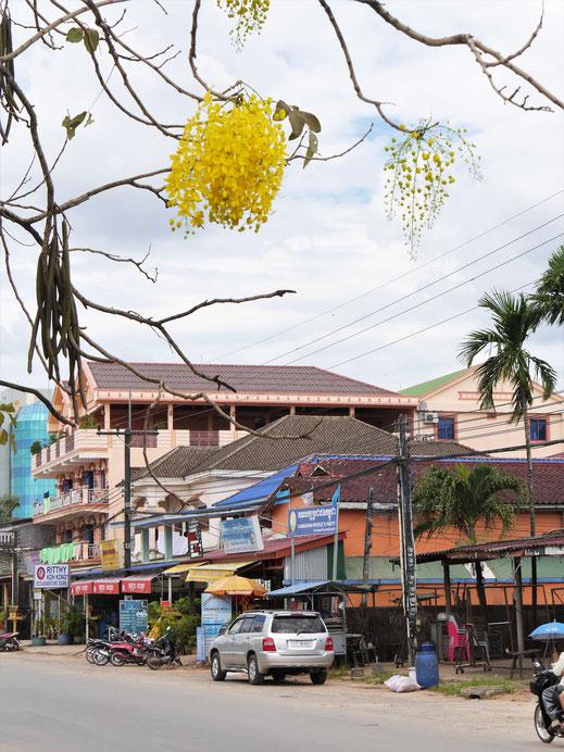 Koh Kong City ist vielleicht nicht die Attraktion schlechthin... Koh Kong City, Kambodscha (Foto Jörg Schwarz)
