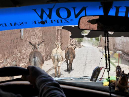 Reiseblog Spurenwechsler Reise Reiseberichte Reisereportagen Reisetipps Reisefotografie Reisefotos Fotos Kultur Natur Weltenbummler Weltreise slowtravel slow travel traveller Urlaub Ferien Frei Unterwegs