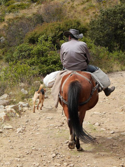 Selten begegnet man hier irgendeinem Menschen... páramo de Ocetá, bei Mongui, Kolumbien (Foto Jörg Schwarz)