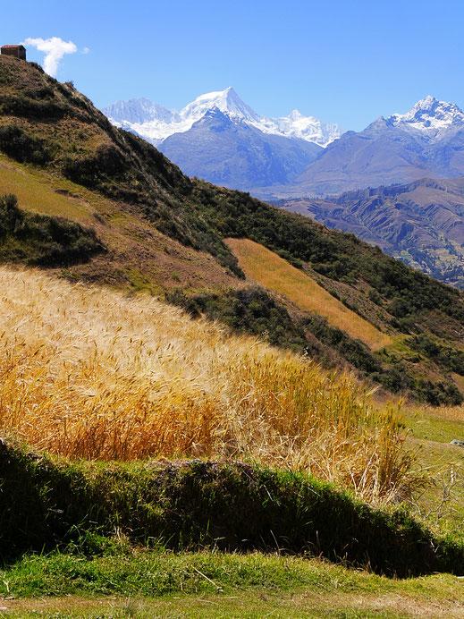 Auf gut 3.500 m in der Cordillera Negra, Huaraz, Peru (Foto Jörg Schwarz)