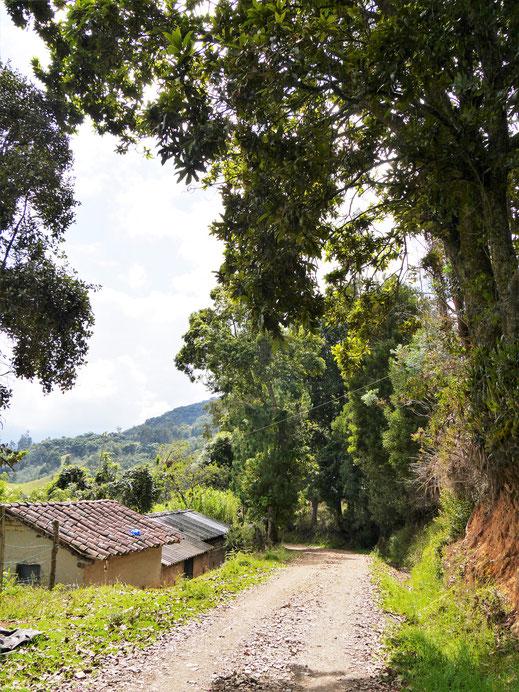 Wanderareale bieten wundervolle Einblicke in die Landschaft, bei Gachantivá, Kolumbien (Foto Jörg Schwarz)