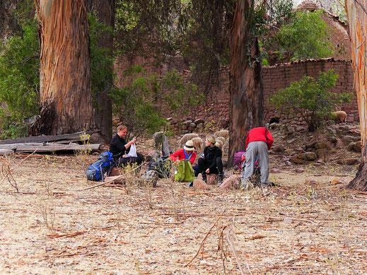Speisen unter alten Eukalyptusbäumen, Chaunaca, Bilivia (Foto Jörg Schwarz)