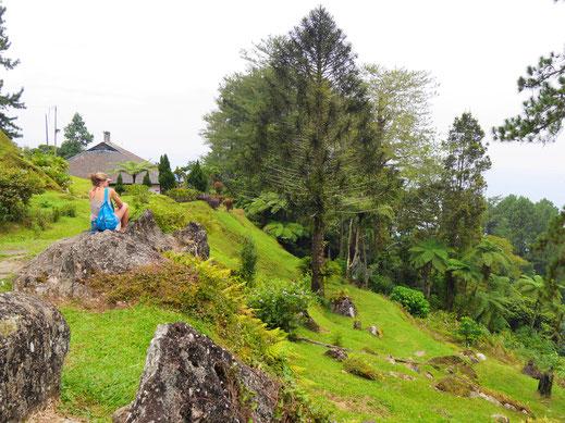Zahlreiche Gebäude der ältesten Hillstation in Malaysia schmiegen sich an den Berg, Taiping, Malaysia (Foto Jörg Schwarz)
