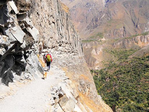 Doch! Es ist so steil wie es aussieht... Colca-Canon, Peru (Foto Jörg Schwarz)