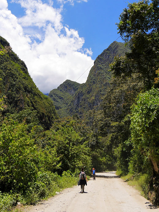 Beim Abstieg von den Ruinas... Machu Picchu, Peru (Foto Jörg Schwarz)
