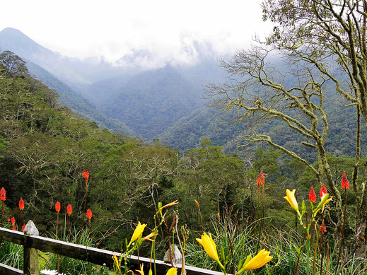 Blick vom Mirador Montana, Salento, Kolumbien (Foto Jörg Schwarz)