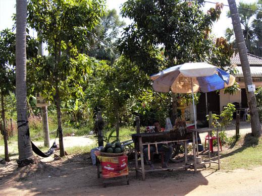 So ein typischer Straßenstand mit Spiesschen, Melonen und mehr... Bei Siem Reap, Kambodscha (Foto Jörg Schwarz)