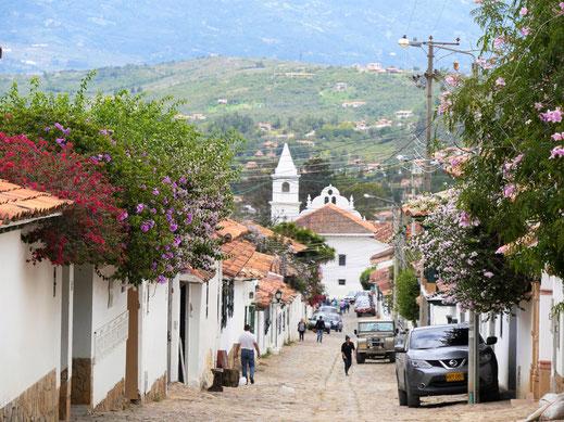 Die Stadt ist auch wahnsinnig blumig und grün... Ville de Leyva, Kolumbien (Foto Jörg Schwarz)