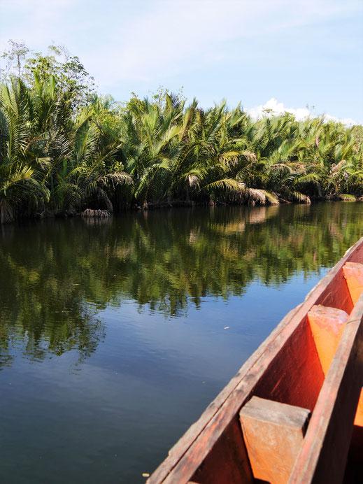 In immer enger werdenden und ruhiger fließenden Flussarmen... Preat-Fluss, Kambodscha (Foto Jörg Schwarz)