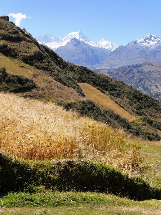 Immer wieder wundervolle Blicke in die fantastische Landschaft, Huaraz, Peru (Foto Jörg Schwarz)