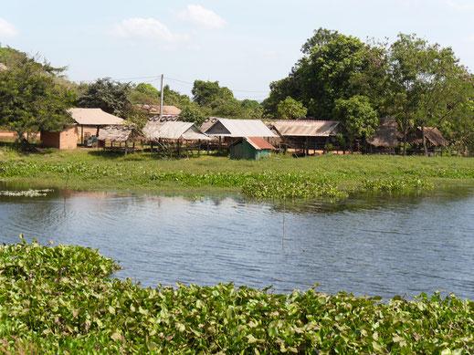 Wohnhäuser am Rande des Brateak Krola Sees, bei Kampot, Kambodscha (Foto Jörg Schwarz)