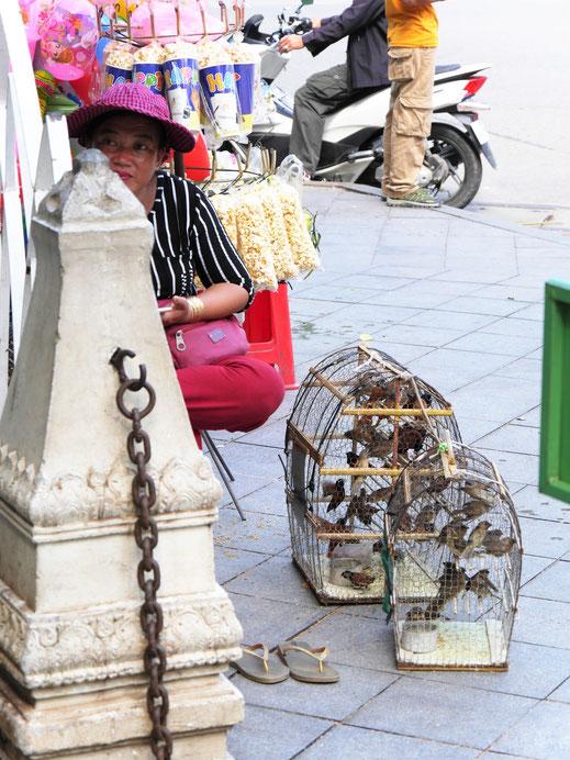 Kauf einen Vogel frei und sammle Lebensglück... Phnom Penh, Kambodscha (Foto Jörg Schwarz)