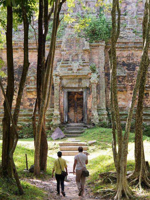 Verwunschene Szenen: Alte Tempelarchitektur mitten im Dschungel... Sambor Prei Kuk, Kambodscha (Foto Jörg Schwarz)