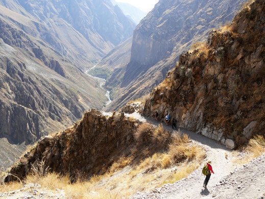 Mehrtagestrek im 1.200 m tiefen Colca-Canon, Peru (Foto Jörg Schwarz)