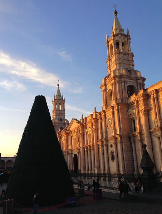 Stimmt ja! Ist ja bald Weihnachten... Der noch unfertige Baum vor der im Sonnenuntergang leuchtenden Kathedrale, Arequipa, Peru (Foto Jörg Schwarz)