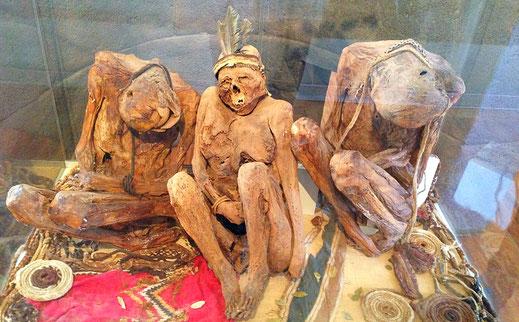 Museo Carlos Dreyer: Die drei Mumien einer Chullpa aus Sillustani, Puno, Peru (Foto Jörg Schwarz)