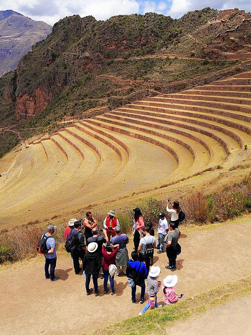 Ein Guide erklärt die vielzähligen unterschiedlichen Terassenanlagen in Pisac, Pisac, Peru (Foto Jörg Schwarz)
