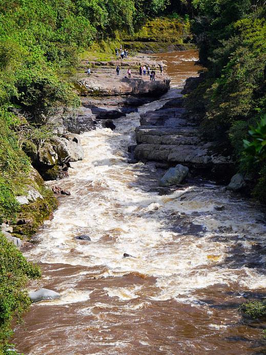El Estrecho - Eine Flussenge am Río Magdalena, San Augustín, Kolumbien (Foto Jörg Schwarz)