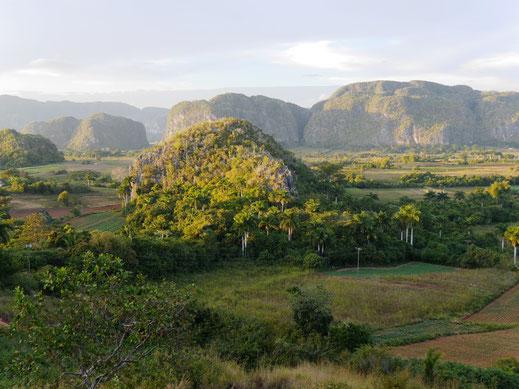 Karstfelsenlandschaft und Tabakanbaufläche, Valle de Vinales, Kuba (Foto Jörg Schwarz)