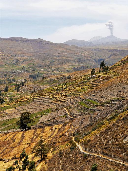 Immer wieder bricht im Hintergrund der Sabancaya aus, Chivay, Peru (Foto Jörg Schwarz)