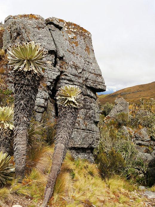 Nein, dies sind nicht die Osterinseln... Monguí, Kolumbien (Foto Jörg Schwarz)
