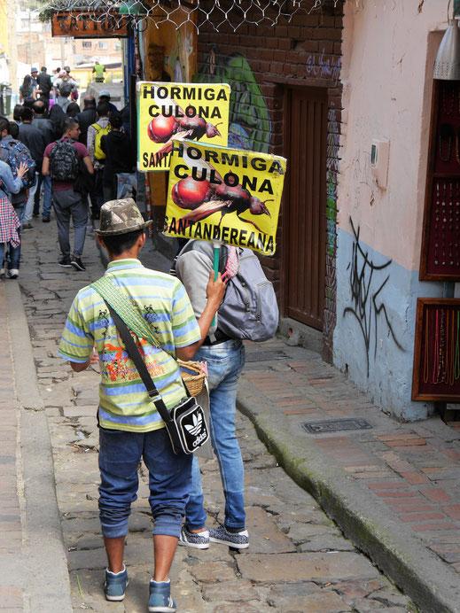 Das ist mal ein ganz anderer Snack: Geröstete Insekten! Ameisen? Bogotá, Kolumbien (Foto Jörg Schwarz)