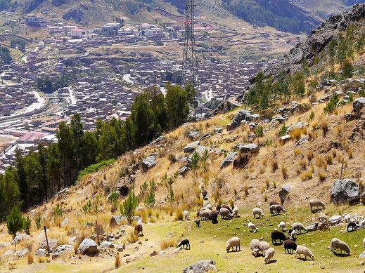 Immer weiter verschwindet die Stadt in die Tiefe... Huancavelica, Peru (Foto Jörg Schwarz)