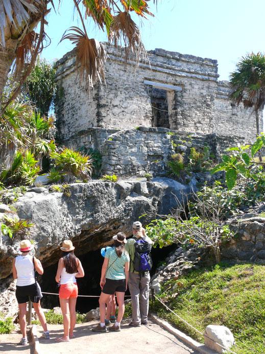 Die Casa del Cenote - Touristen beobachten in der Cenote zahlreiche Echsen (Foto Jörg Schwarz)