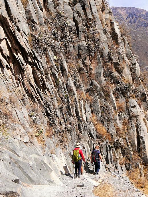 Wundervolle Bergfassaden, Colca-Canon, Peru (Foto Jörg Schwarz)
