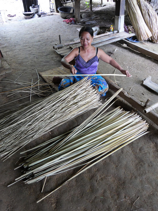 Vorgang Nr. 1: Das Gras wird in kleinere Streifen zerlegt... Bei Battambang, Kambodscha (Foto Jörg Schwarz)