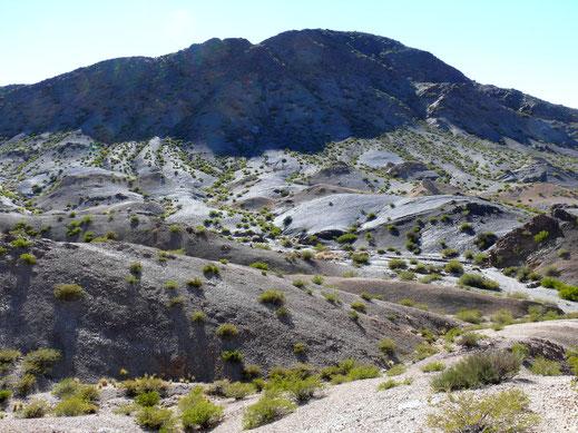 Es geht diesen schwarzen Berg hinauf... Barreal, Argentinien (Foto Jörg Schwarz)