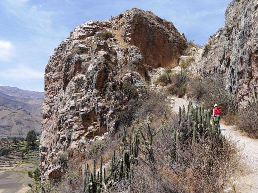 Unser Vorschlag Nr. 7: Im mittleren Colca-Canon eine Wanderung zu Inkagräbern und den Ruinen von Uyo Uyo, Chivay, Peru (Foto Jörg Schwarz)